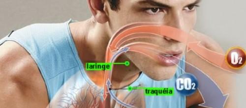 Entenda a importância de uma respiração adequada durante atividade física