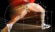 Saiba o que é tensegridade muscular e previna lesões