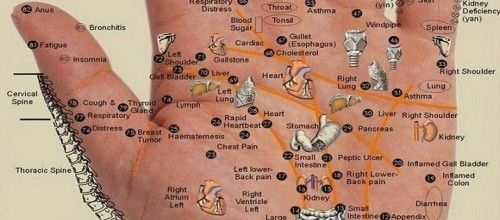 acido urico da disfuncion erectil efectos nocivos del acido urico acido urico y cancer de prostata