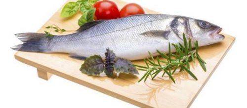 Peixe: de anemia a osteoporose, pescados ajudam a prevenir doenças e aumentam o valor nutricional da dieta