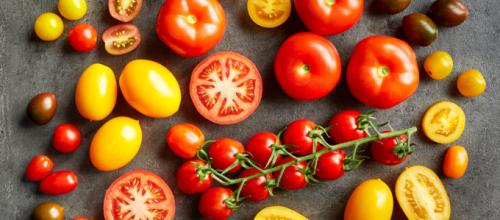 Extrato de tomate pode barrar câncer de estômago